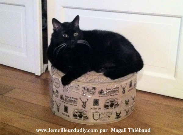 je l 39 ai fait diy le grattoir en carton pour chat. Black Bedroom Furniture Sets. Home Design Ideas