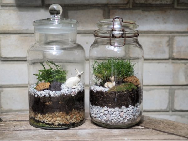 diy comment fabriquer son terrarium le meilleur du diy. Black Bedroom Furniture Sets. Home Design Ideas