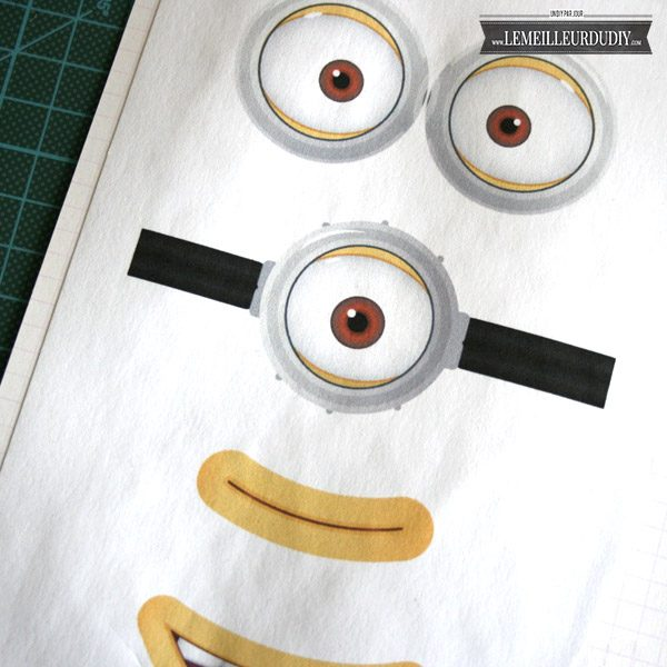 DIY Les furets customisation