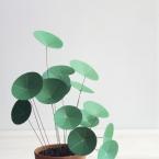 DIY Un belle plante verte de papier