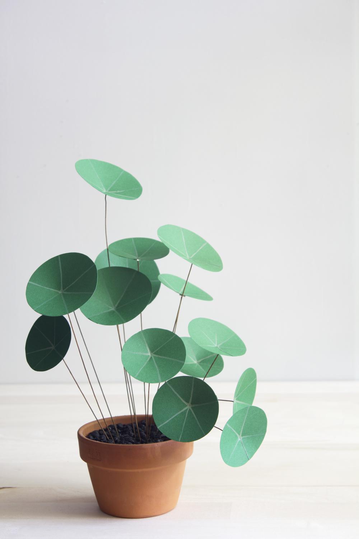 diy une tr s belle plante verte en papier le meilleur du diy. Black Bedroom Furniture Sets. Home Design Ideas