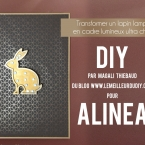 Battle DIY LemeilleurduDIY Alinea Magali THIEBAUD