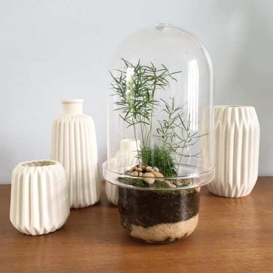 Les plus beau des terrarium do it yourself