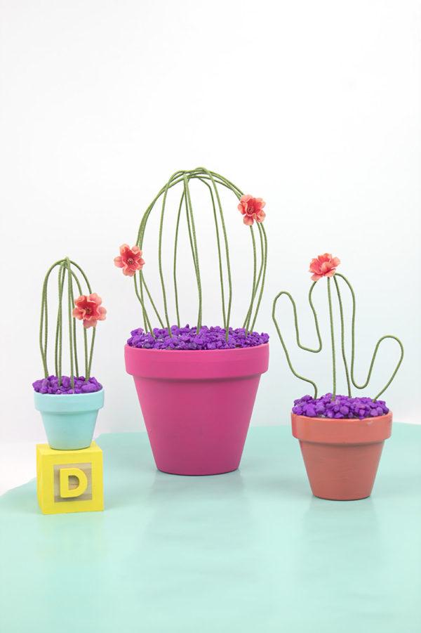 DIY tutorial pour apprendre à fabriquer des cactus qui ne meurent jamais