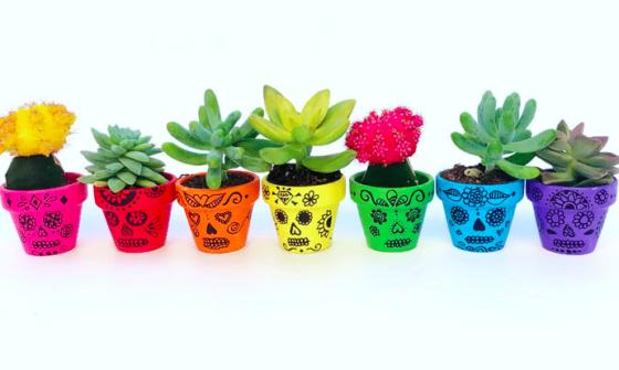 DIY Pots de cactus pour Halloween