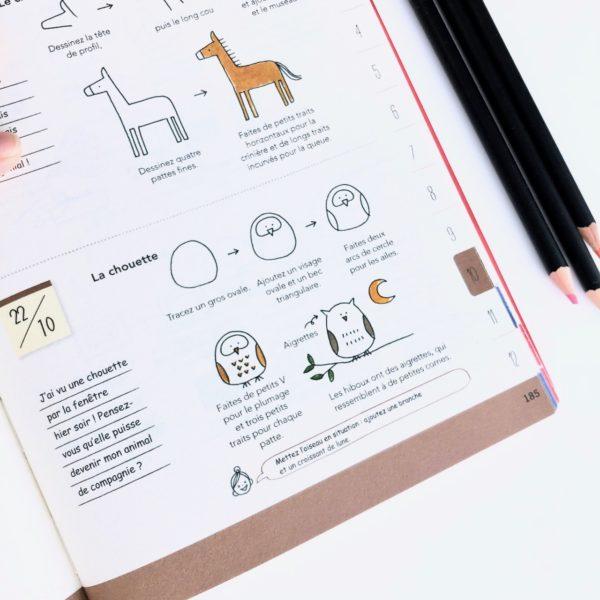 J'ai testé le livre Tout dessiner au jour le jour Tome 2 par Magali THIEBAUD du blog Le Meilleur Du DIY La chouette