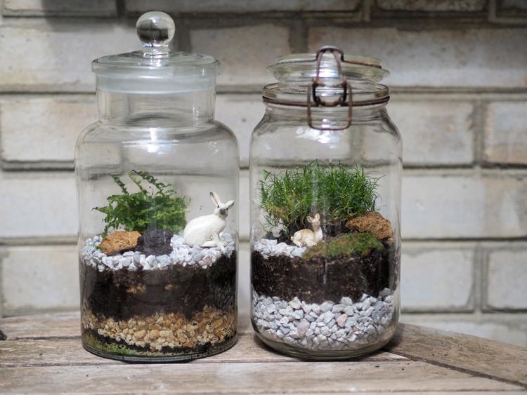 DIY fabriquer son terrarium