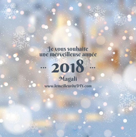 Bonne année de la part de Magali Le Meilleur Du DIY